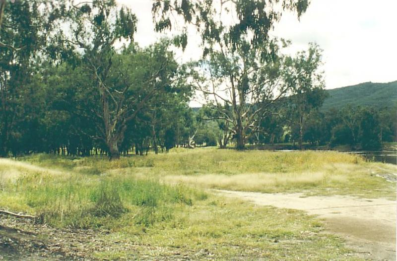 Campground at Kennedys Reserve