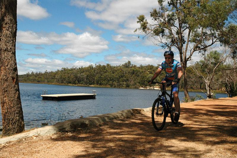 Mountain biking at Lake LeschenaultiaThere are over 10km of walking/biking trails at Lake Leschenaultia