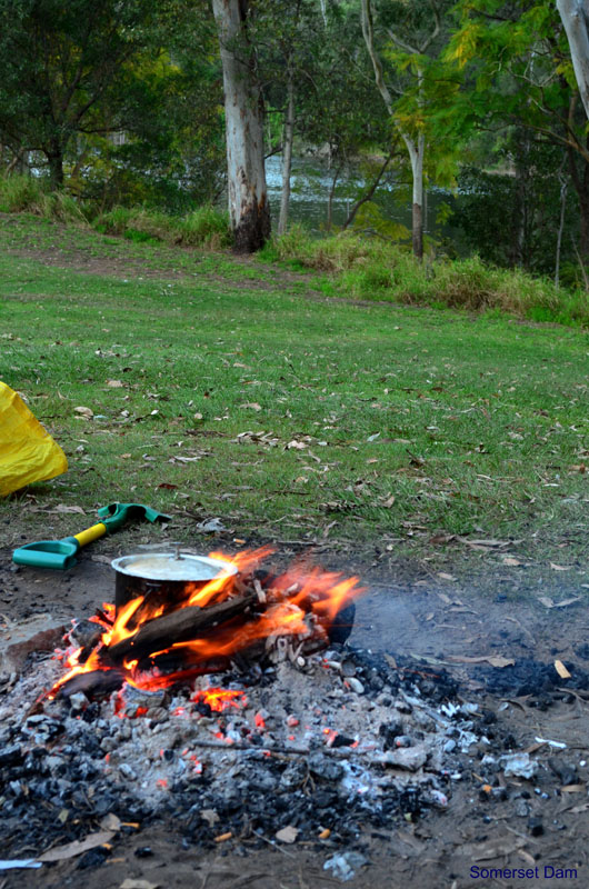 Somerset Parkcampfires allowed, wood is available from the caretaker, or bring your own