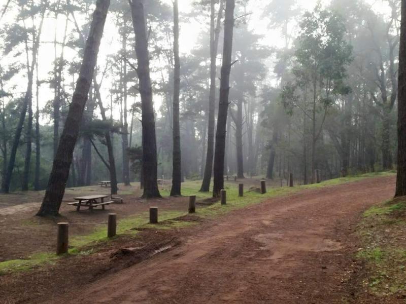 Camping At Lane Pool Reserve