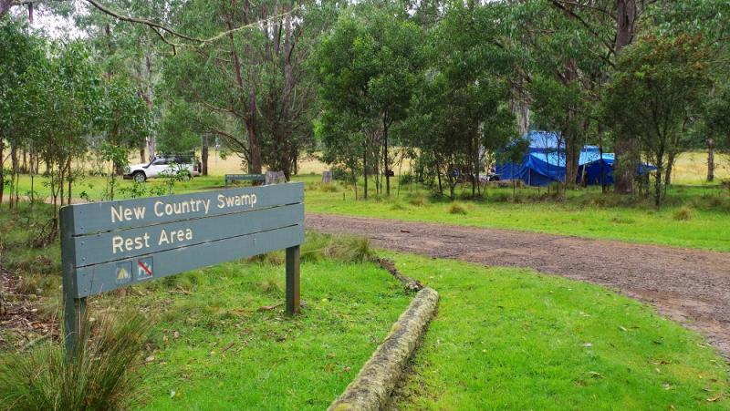 New Country SwampEntrance to campsite.
