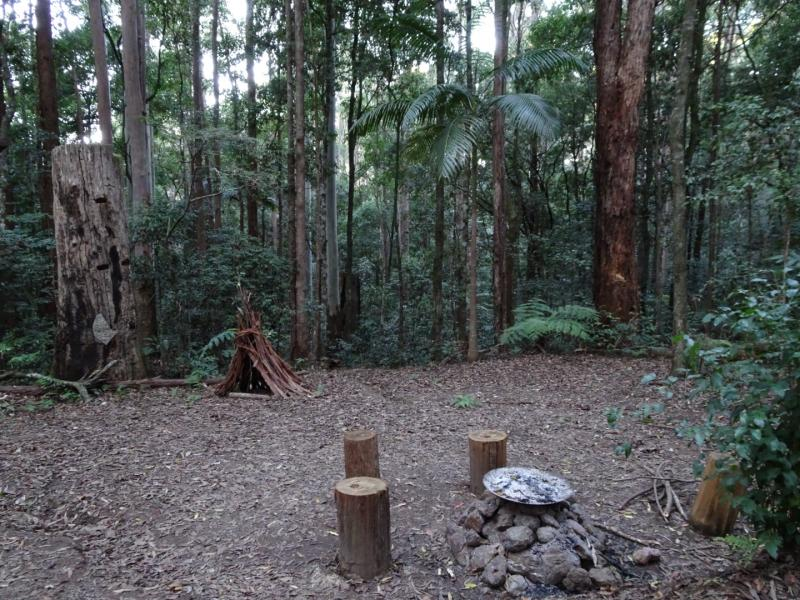 Laniakea Rainforest CampingTepee Terriors. Suits large tents with your 2wheel drive car right next to camp site. Fire pit provided, you are welcome to collect kinderling 2-3cm in diameter, solid chunk sustainable non habitat fire wood available for purchase